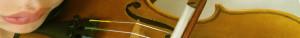 San Diego Violins Finest Quality Stringed Instrument Rentals