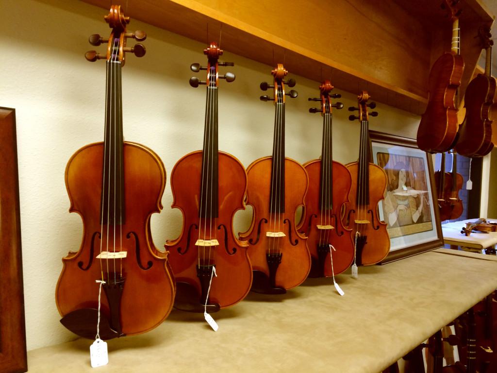 VIolins, Violas, Cellos, and Double Bass